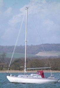 new mast